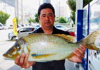 那覇一文字で61センチ、2.75キロのタマンを釣った大城良広さん=19日
