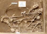 山形大、ペルーの遺跡で人骨発見 宗教儀礼の犠牲者か