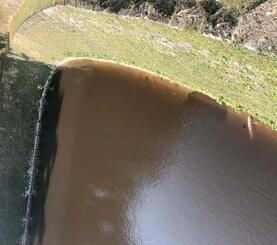 茶色く濁った円鑑池。魚が水面に上がっている様子が確認された=1日、那覇市首里当蔵町(上里直司氏撮影)