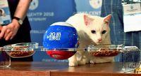 開幕戦「ロシア勝つ」/エルミタージュの予言猫