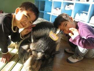 頭に名札を付けてもらったぷりんちゃん=2010年1月(大山幼稚園提供)