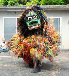 新型コロナウイルス退散を願い、特別に舞った八重瀬町志多伯の神獅子=5日、同所