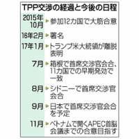 TPPに要望連発、同床異夢あらわ 日本主導で着地探るが…【深掘り】