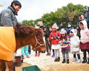1歳の誕生日会で集まった子どもたちに祝福されるヨナグニウマの「なぐに」=24日、沖縄市・沖縄こどもの国