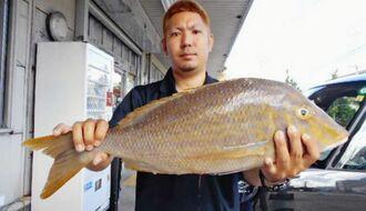 安謝海岸で68・5センチ、3・76キロのタマンを釣った嘉陽涼太さん=14日