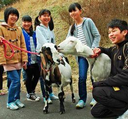 南三陸町の子どもたちとたわむれるヤギの親子キュウ(左)とシーナ=10日、宮城県南三陸町・入谷小学校