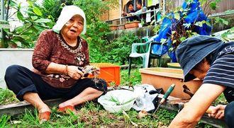 収穫したニラの根を処理する知花キヨさん(左)=1月6日、沖縄市