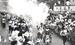糸満町(現・糸満市)を通過する聖火=1964年9月8日