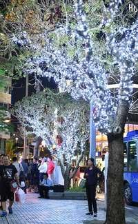 那覇を彩るクリスマスカラー 「くもじイルミネーション」点灯 来年2月まで