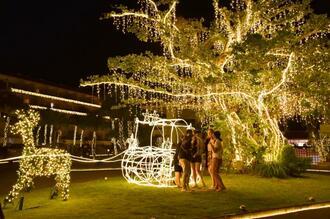 トナカイが引くそりのオブジェで、記念撮影する来場者たち=1日、名護市・カヌチャリゾート