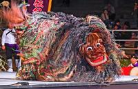 ちょっと怖い? 沖縄の獅子舞は毛並みフサフサでド迫力 フェス盛況