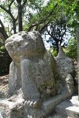 嘉数の3代目の村獅子。琉球石灰岩を削り、セメントで足や尻尾を付け加えた