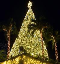 沖縄の夜に100万の輝き 名護・カヌチャでイルミネーション始まる