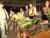 ハンダマ、フダンソウが100円 毎月第3日曜 名護・宮里朝市で多彩な野菜