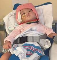 心臓移植のひまりちゃん、経過良好 一般病棟に移る