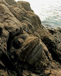 魚かよ!マジでそっくりすぎる岩 石垣島の新名所24選