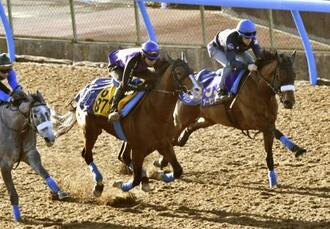 最終追い切りで、併せ馬から先頭へ抜け出すアーモンドアイ(右)=美浦トレーニングセンター