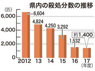 県内の殺処分数の推移