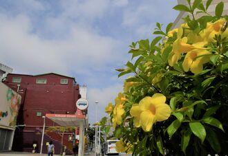 雲が切れ、徐々に青空が広がる国際通り=2日午前10時5分、那覇市牧志