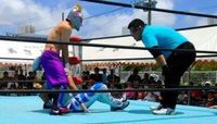 迫力プロレスに沸く 沖縄市の美さと児童園