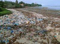 国連、海のプラごみ削減へ新組織 政策や代替品検討