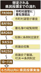 想定される県民投票までの流れ