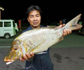 1月31日、名護海岸で70センチ3.83キロのタマンを釣った玉城利彦さん
