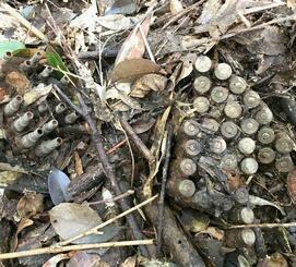 米軍北部訓練場の返還跡地で見つかった空包=14日、国頭村安田(宮城秋乃さん提供)