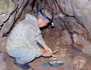 遺骨の特徴を確認し、性別や年齢などを予想しながら収集する具志堅隆松さん=2月14日、糸満市伊敷