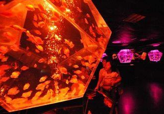 カラフルなライトに照らされた幻想的な世界を楽しむ来場者=18日午前、那覇市久茂地・デパートリウボウ6階