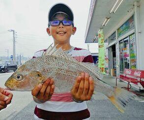 泡瀬漁港で44.5センチ、1.27キロのガクガクを釣った宮里昂汰さん=2日