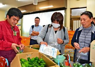 知花卓さん(左端)からピーマンの袋詰め作業を教わるツアー参加者たち=11月27日、沖縄市登川・JAおきなわの「中部ファーマーズマーケットちゃんぷるー市場」
