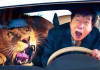 【沖縄タイムス・松田興平の映画コレ見た?】「カンフー・ヨガ」 63歳のジャッキーが元気だ