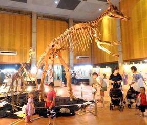 巨大な恐竜の全身骨格に見入る来場者=竹富町上原、中野わいわいホール