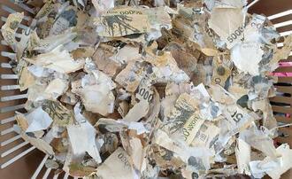 洗濯機で洗浄され細切れになった紙幣(韓国銀行提供・聯合=共同)