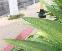 沖縄本島に大雨警報 竜巻注意情報も発表 土砂災害に警戒を
