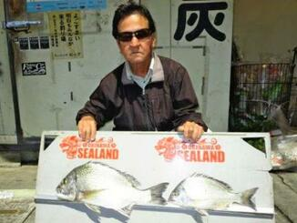 東浜海岸で50.3センチ、2.1キロのチンシラーを釣った与那嶺勉さん=16日