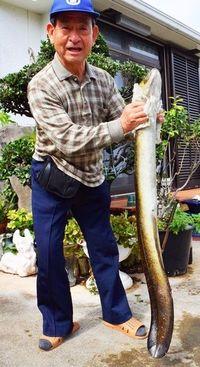 「謎の物体」と格闘30分! 沖縄の男性、1メートル超の大物にビックリ