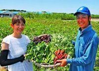 野菜はありのままでいい 「自然栽培」こだわる沖縄農家