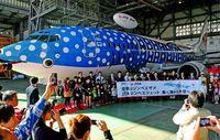 「ジンベエジェット」に2年間 沖縄へのこだわり今も昔も【飛べ うちなーの翼 JTA創立50年・下】