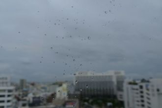 午後からは雨も上がりました