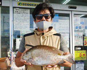 本部海岸で36.3センチ、0.99キロのカーエーを釣った渡部涼太さん=12日