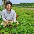 登録された品種、種取り生産禁止 沖縄の果物・野菜はどうなる? 種苗法改正案 農家や識者、懸念の声