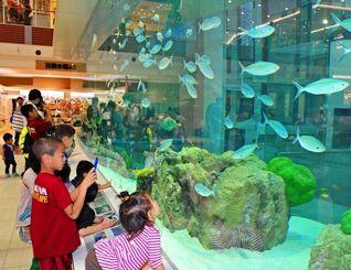 【イオンモール沖縄ライカム写真特集】1階フロアに設置された大型水槽に見入る子どもたち