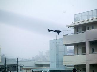 台風で飛ばされるビニール(2012年、写真・石川竜一)