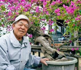 根元に穴が空いた満開のブーゲンビレアを背に笑顔の島袋武雄さん=18日、沖縄市池原・美原園芸