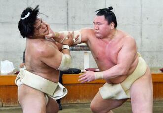 合同稽古で若隆景(左)と相撲を取る白鵬=24日、両国国技館内の相撲教習所(代表撮影)