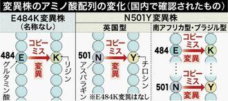 変異株のアミノ酸配列の変化(国内で確認されたもの)