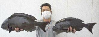 北部海岸で49センチ、1.48キロの尾長グレを釣った前濱健一さん=16日