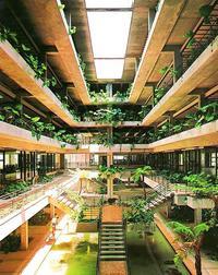 豊かな空間演出を評価 モダン建築208選にムーンビーチ 沖縄県内5番目